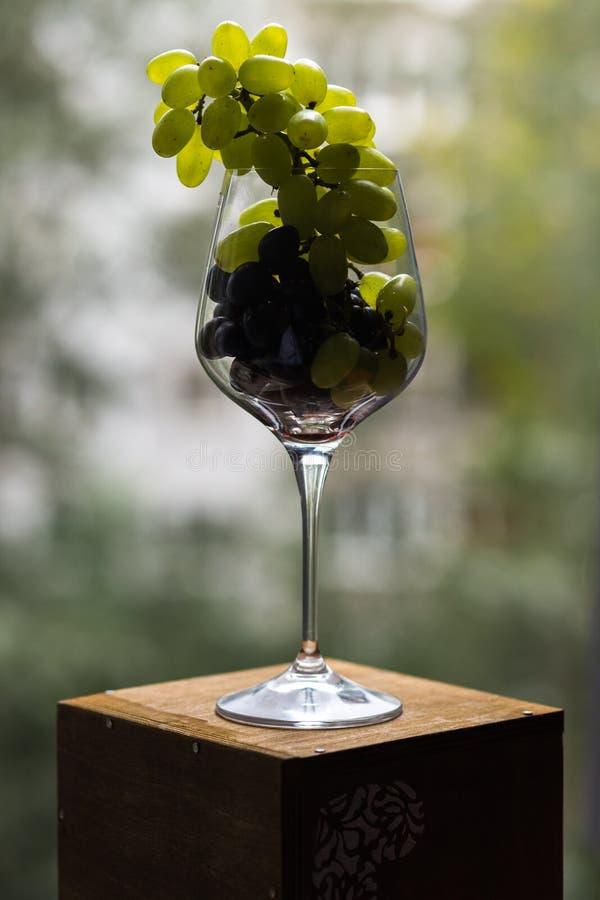 Ett matfoto kombinerar okompatibla bilder Borstar av röda och gröna druvor i ett vinexponeringsglas ser aristokratiska och arkivbild
