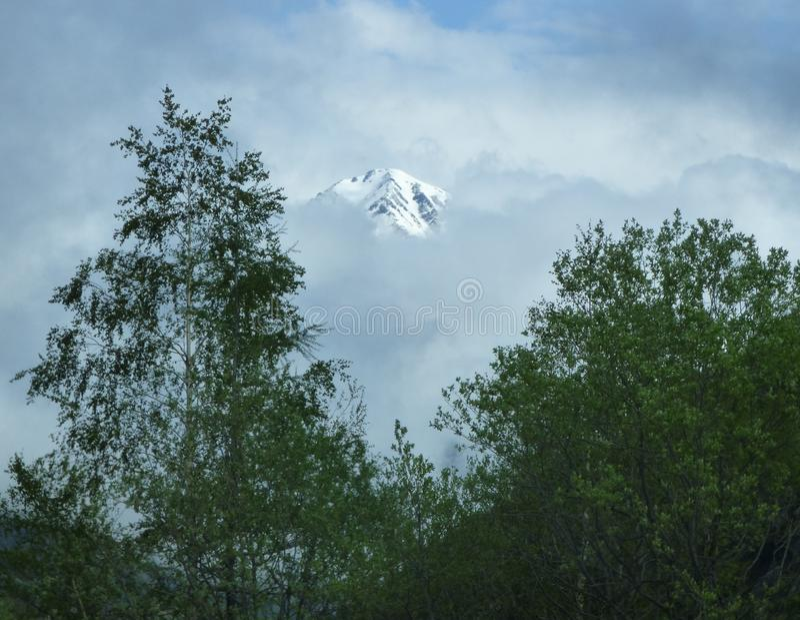 Ett maximum i de franska fjällängarna som visar till och med dimman med träd i förgrunden arkivfoto
