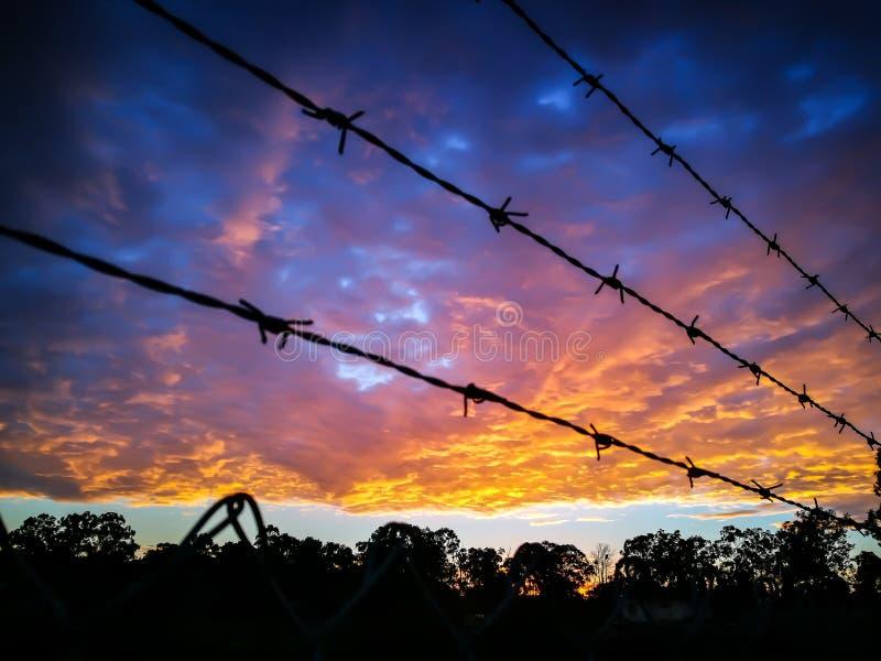Ett metallstaket med taggtråd och dramatisk soluppgånghimmel med moln ovanför skog i lantlig stad av Australien arkivbilder