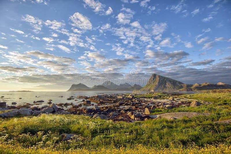 Ett mitt- summerday på Sandnes, Lofoten öar, nordliga Norge royaltyfria foton