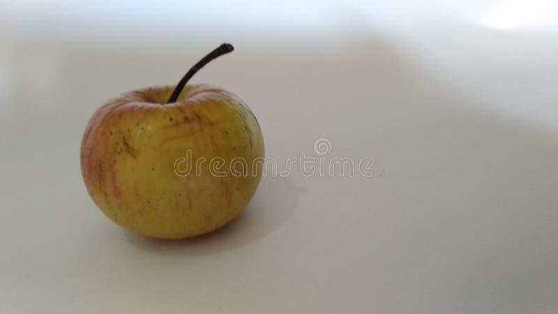 Ett mycket litet äpple royaltyfri bild