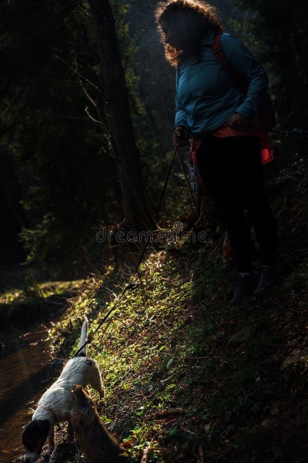 Ett mycket lynnigt mörkt foto av ett kvinnaanseende med hennes hund vid floden i skogen royaltyfria foton