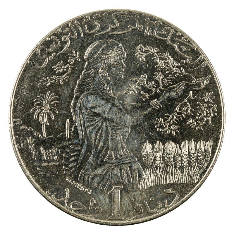 Ett mynt 2013 som för tunisian dinar isoleras på vit bakgrund royaltyfria foton