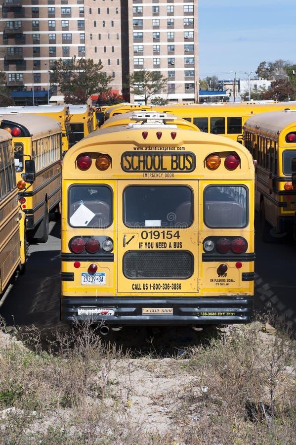 Ett New York City skolbussar. royaltyfri fotografi