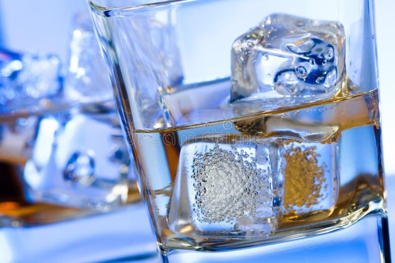 Ett par av exponeringsglas av alkoholdrycken med is på disko slösar ljus royaltyfri foto