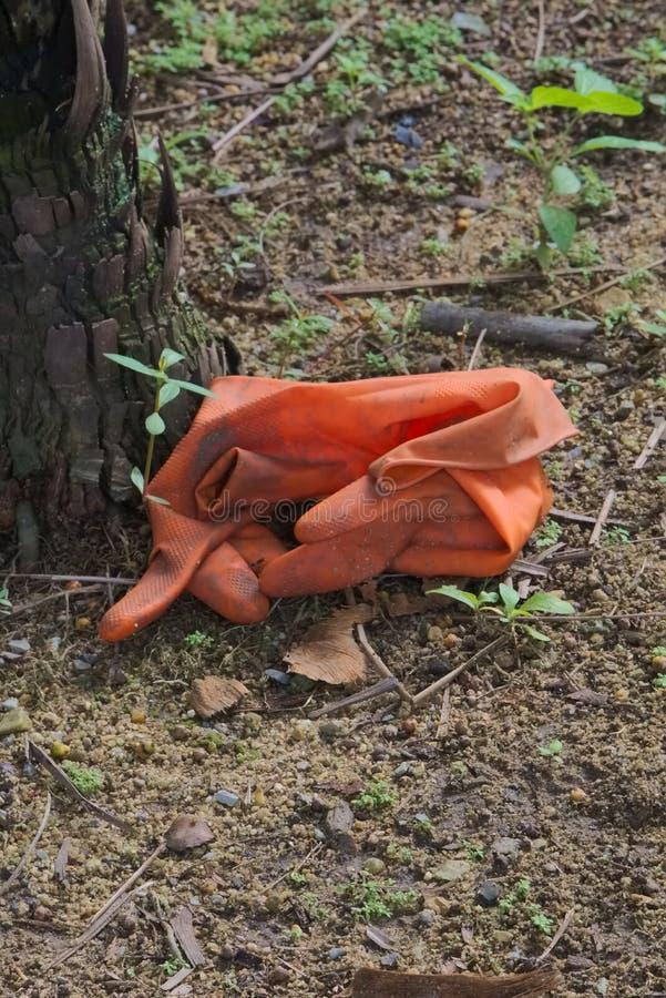 Ett par av gamla och smutsiga orange gummihandskar, kasserat, utan omsorg, nära en palmträd, i ett stort parkerar arkivbild