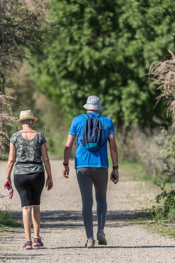 Ett par går på banan av en skog fotografering för bildbyråer