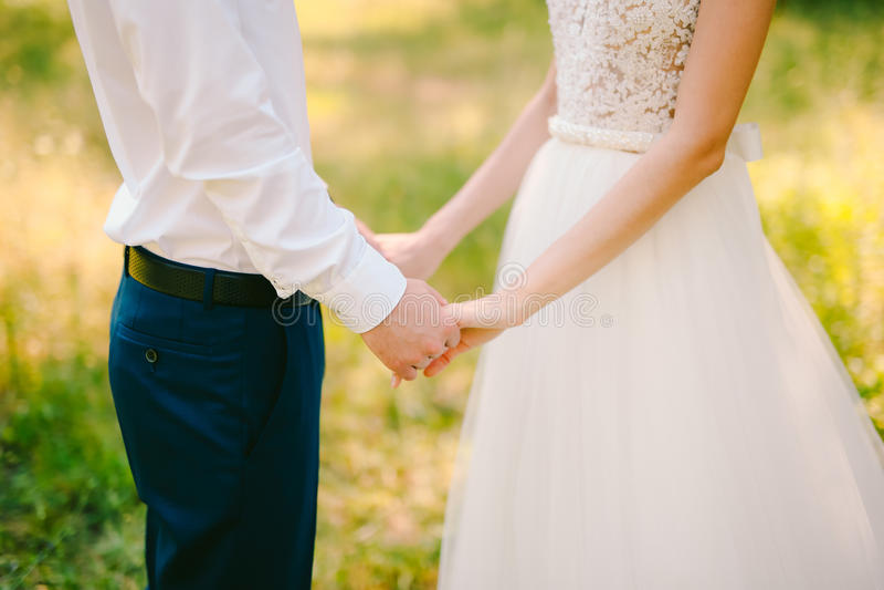 Ett par rymmer händer i en olivgrön dunge Nygifta personer i en oli royaltyfri foto