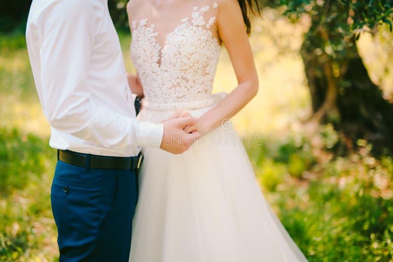 Ett par rymmer händer i en olivgrön dunge Nygifta personer i en oli royaltyfri fotografi