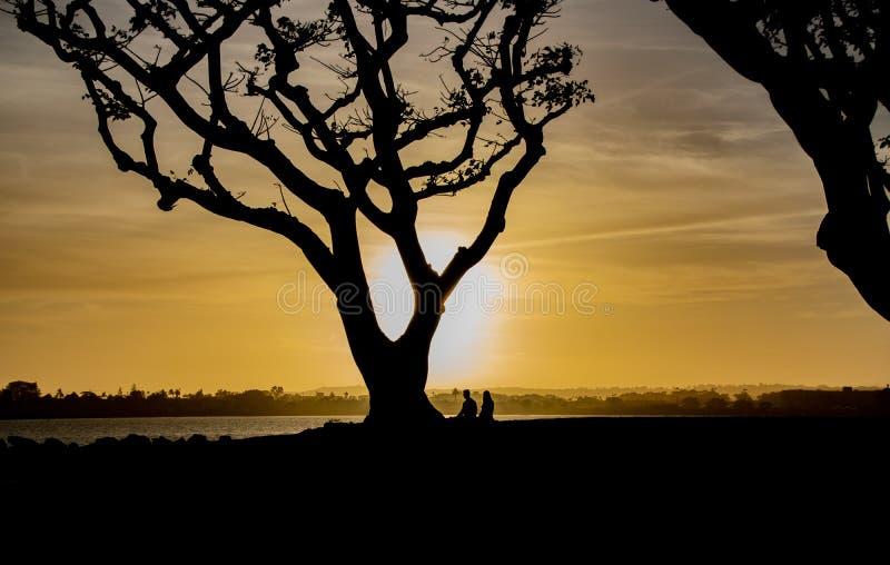Ett par tycker om solnedgången på San Diego Bay fotografering för bildbyråer