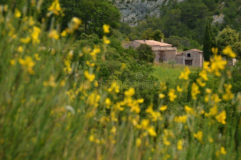 Ett Provencal hus i gult fält royaltyfria bilder