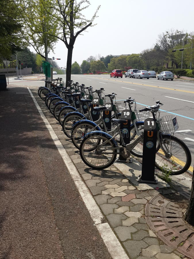 Ett Q av cyklar fotografering för bildbyråer
