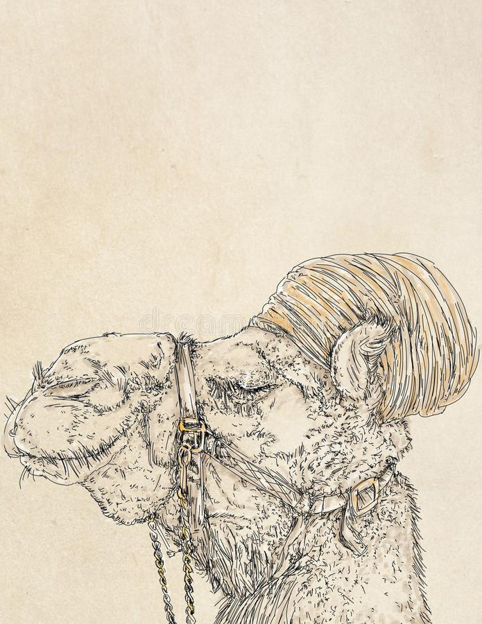 Ett realistiskt en kamel med en blom- halsduk royaltyfri illustrationer