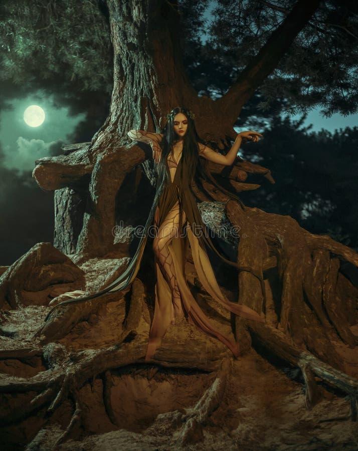 Ett sagolikt; skognymf Gyana royaltyfri fotografi