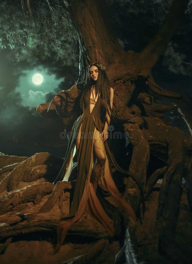Ett sagolikt; skognymf Gyana royaltyfri bild