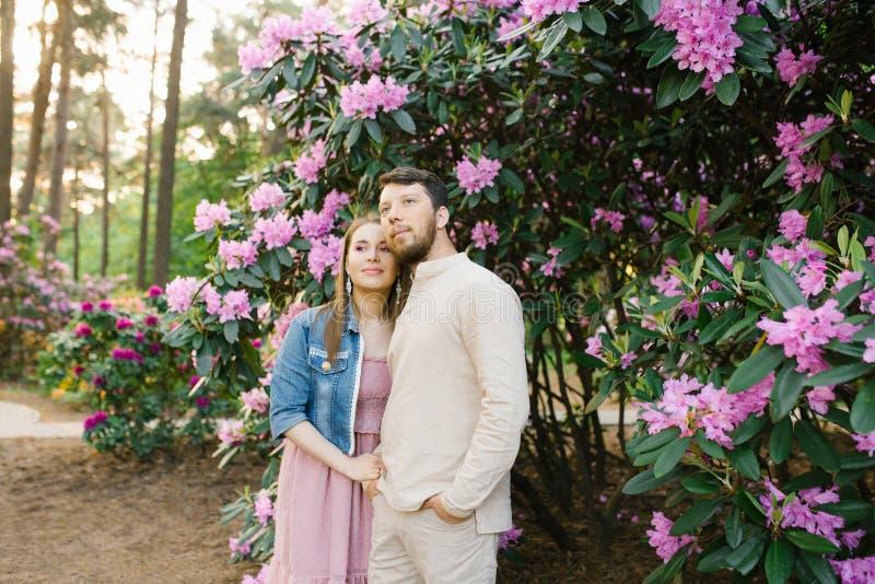 Ett sinnligt ungt par tycker om ett försiktigt varmt angenämt ögonblick av förälskelse som har ett romantiskt datum royaltyfri bild
