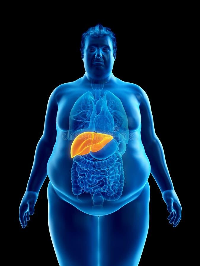 ett sjukligt fett mans lever stock illustrationer