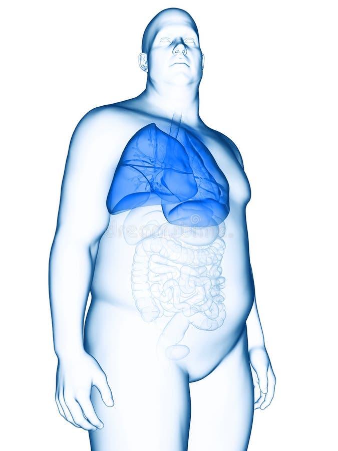 Ett sjukligt fett mans lungan royaltyfri illustrationer