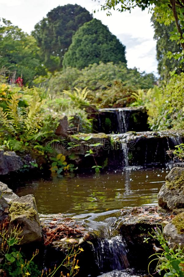 Ett slut upp av en härlig vattenfall som kör till och med en trädgård arkivfoto