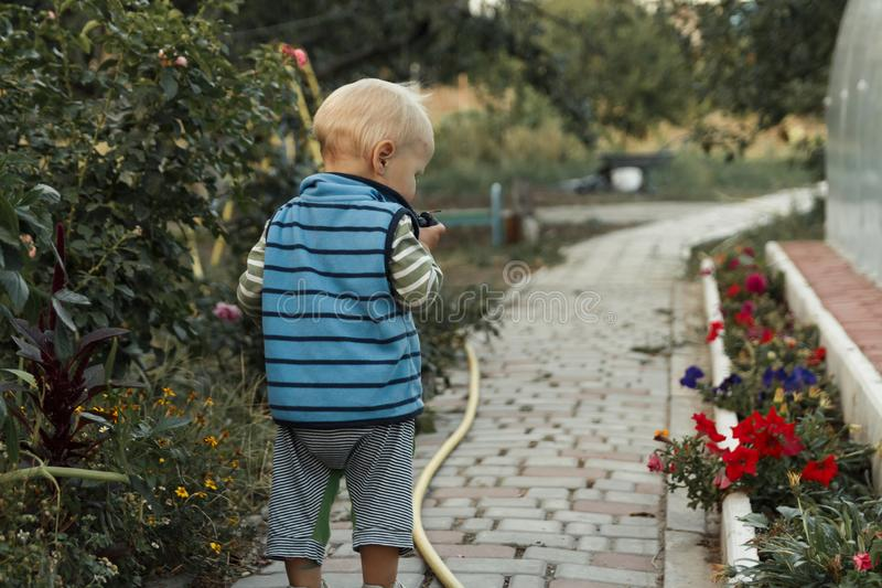 Ett sm?barn promenerar en bana bredvid en rabatt, unders?ker blommor arkivbild