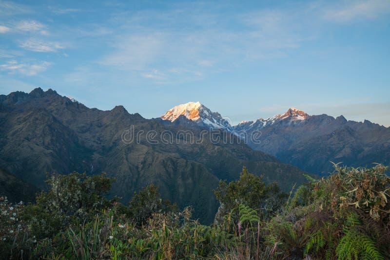 Ett Snowcapped berg i Anderna i ottaljuset royaltyfria bilder