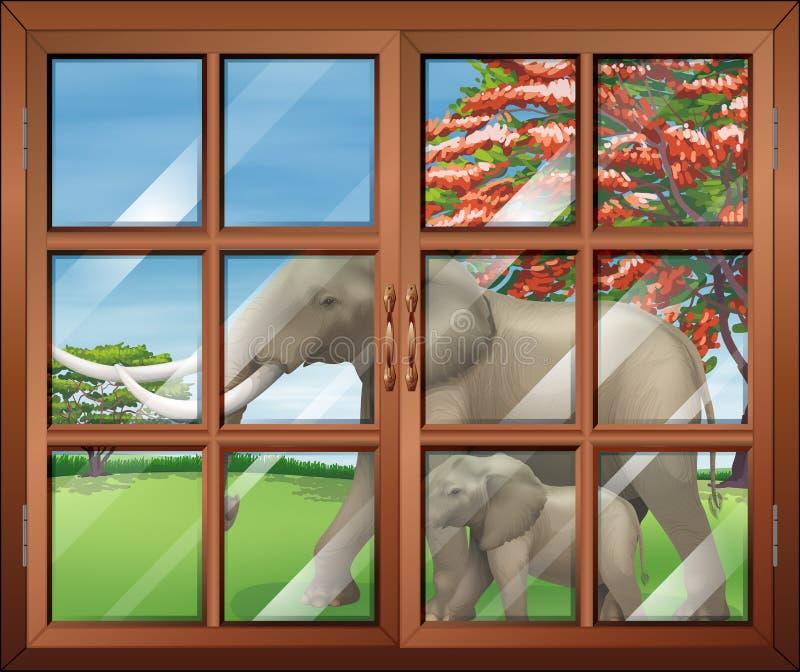 Ett stängt fönster med en sikt av de två elefanterna utanför vektor illustrationer