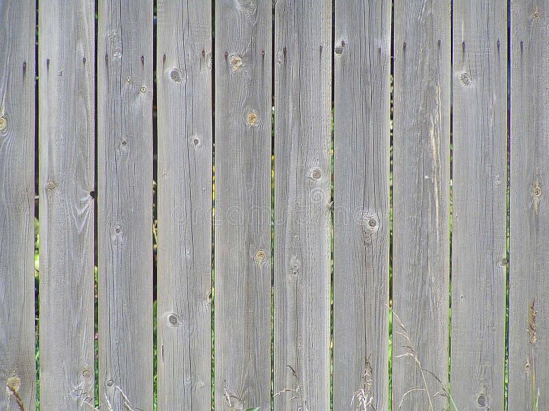 Ett staket av omålade bräden royaltyfri bild