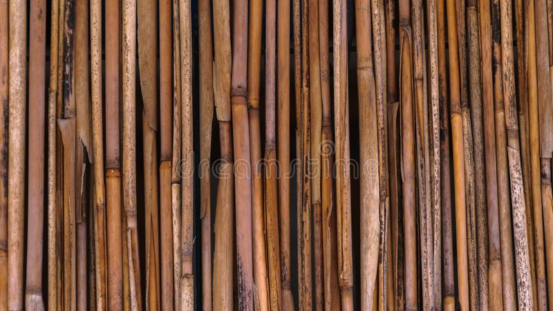 Ett staket av sugr?r i en tropisk stil royaltyfri foto