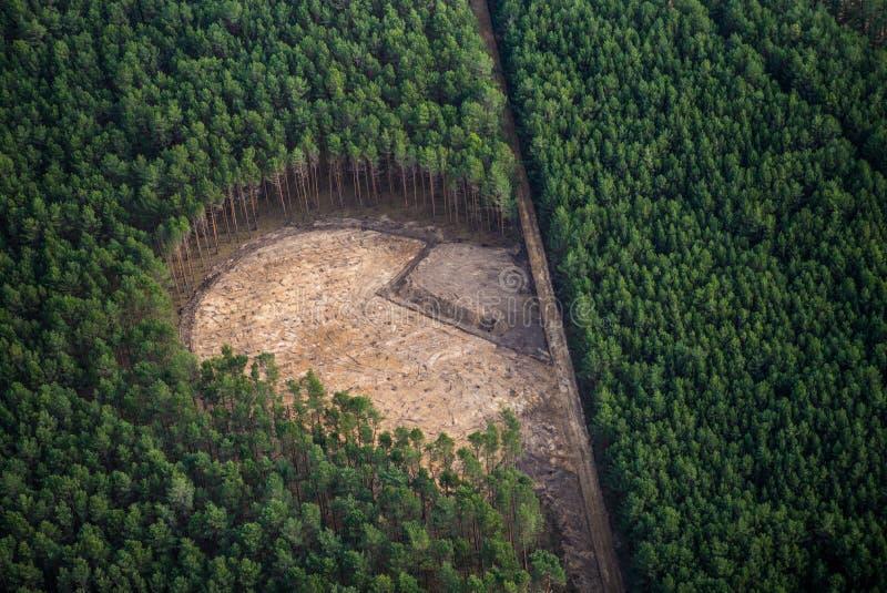Ett stort område i en skog var skörden till uppbyggnad per vindturbinen fotografering för bildbyråer