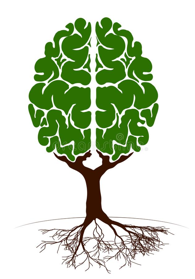 Ett träd i form av en mänsklig hjärna Två halvklot Grön växt för en artikel på kunskap och undervisning vektor illustrationer