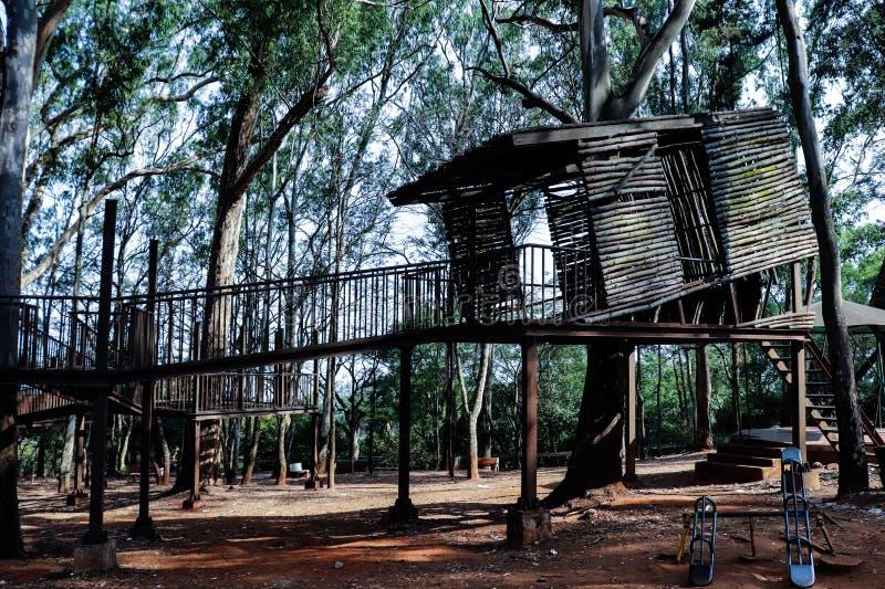 Ett trädhus i Nandihills karnataka arkivbilder