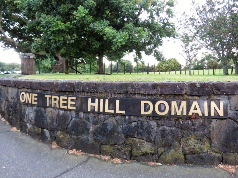 Ett trädkulleområde royaltyfri bild