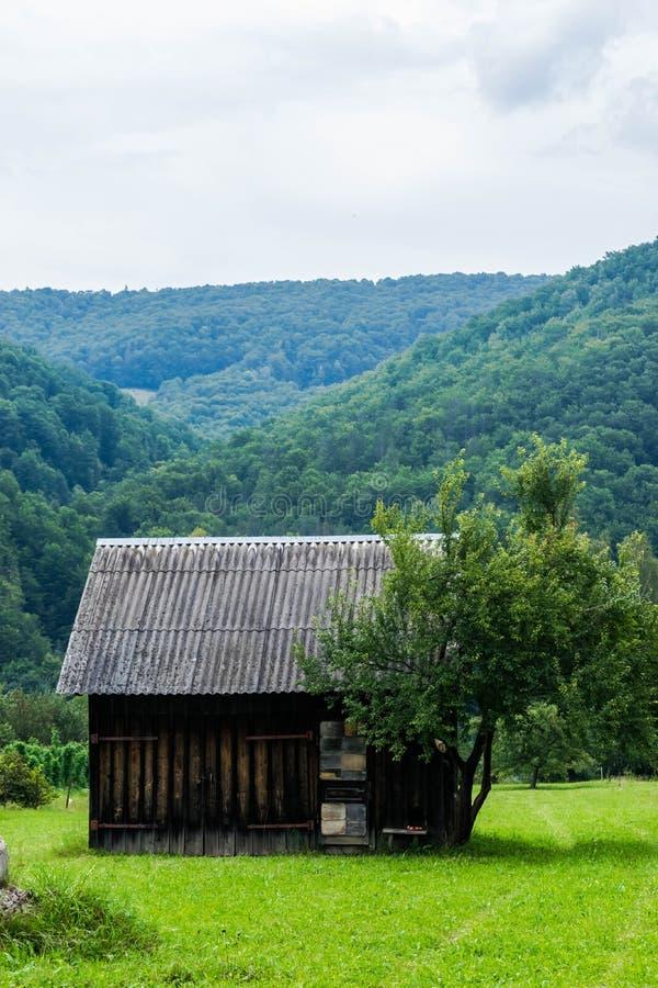 Ett träskjul nära skogen royaltyfria foton