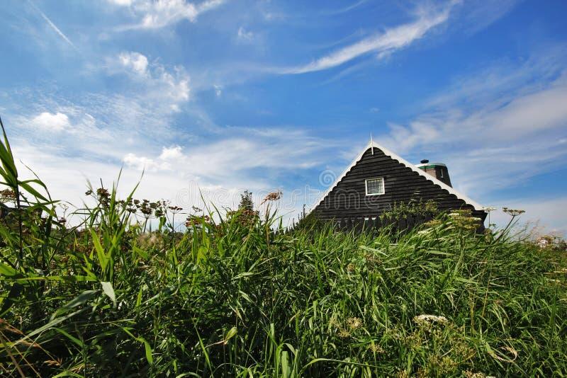 Ett traditionellt trähus i Holland inom grönt gräs på en blå himmel arkivbilder