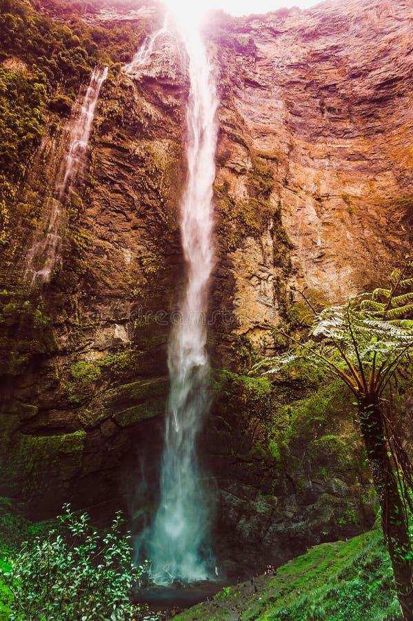Ett underbart landskap kallade Gocta som lokaliserades i Peru royaltyfri fotografi