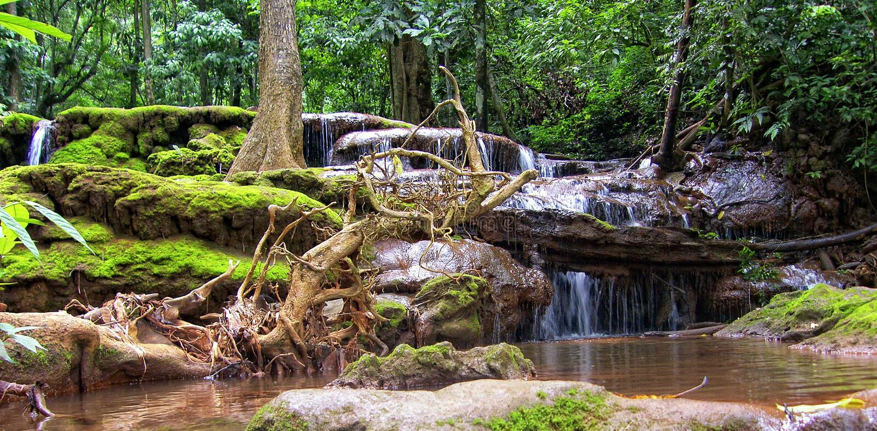 Esotic vattenfall royaltyfria foton