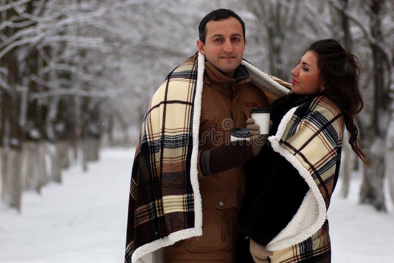 Ett ungt par går i en vinter parkerar royaltyfri foto