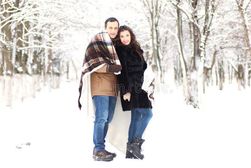 Ett ungt par går i en vinter parkerar royaltyfri bild