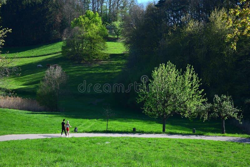 Ett ungt par som går på en slinga i ett härligt landskap i våren i Odenwalden, Tyskland arkivbild