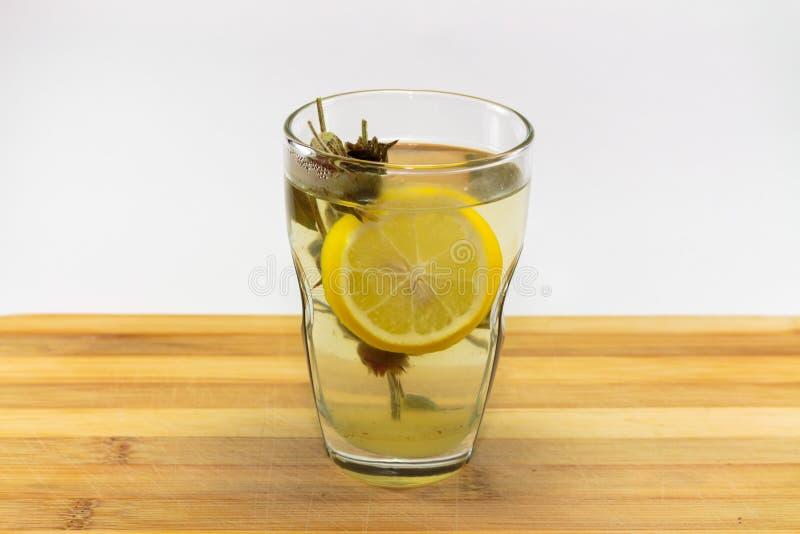 Ett varmt exponeringsglas av vist te, royaltyfri fotografi