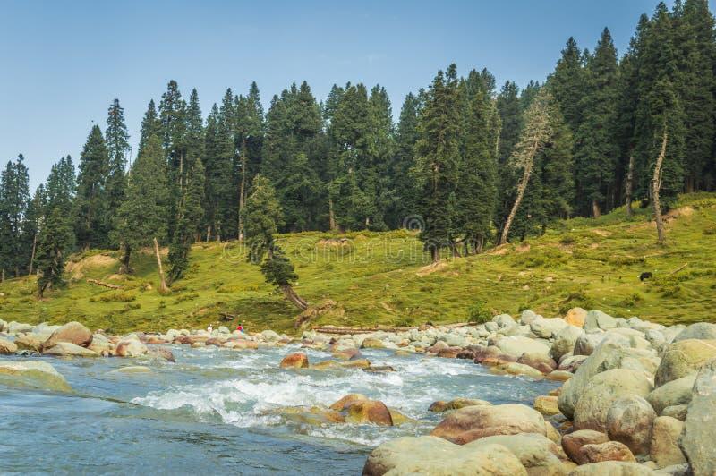 Ett vidstr?ckt f?lt av runda stenblock av en flods?ng i ett landskap i Doodhpathri, Kashmir Klart blått vatten som flödar i sream royaltyfria bilder
