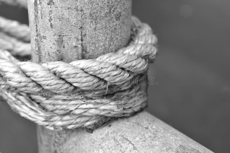 Ett vitt rep som binds runt om en träpol royaltyfria bilder
