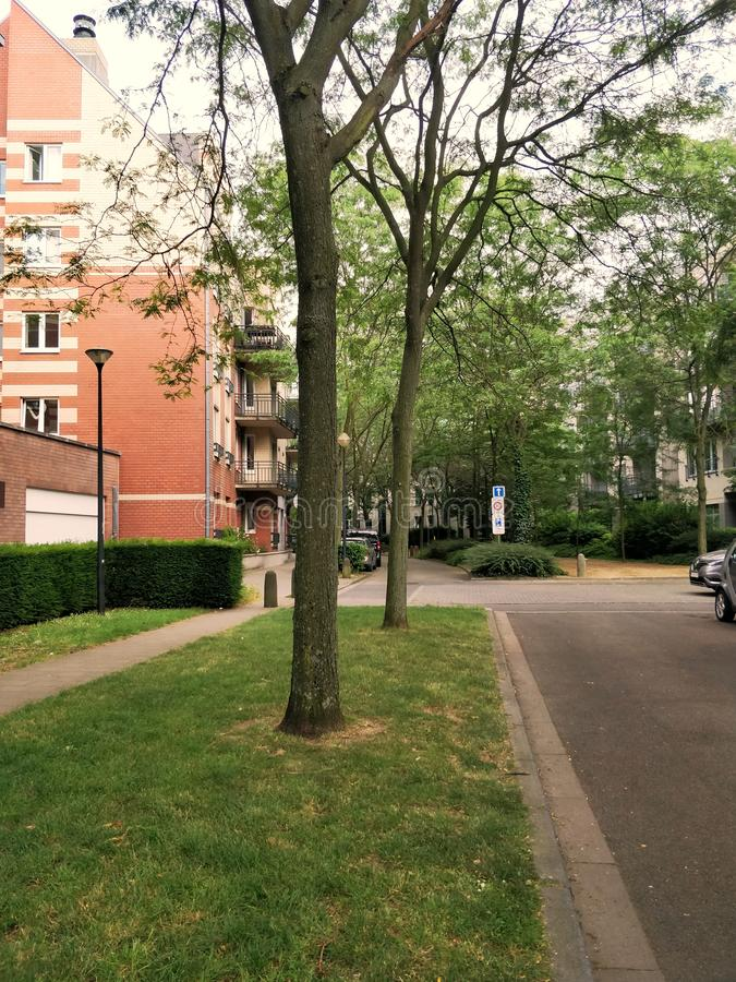 Etterbeek, Belgium. Neighborhoods, building, garden, living, capital, europe, calm, empty, suburban, parking, windows, balcony, trees, green, grass, street stock photo