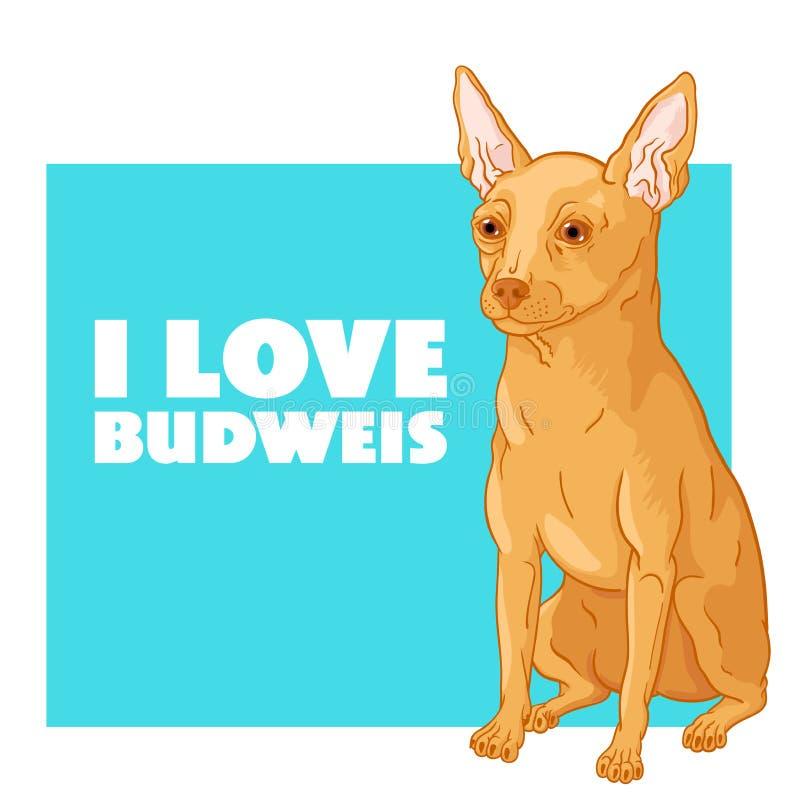 Eu amo Budweis ilustração stock