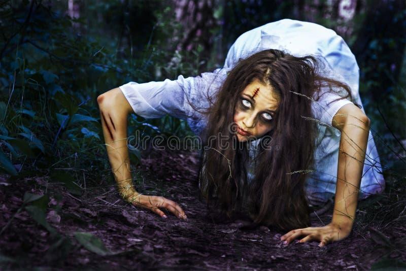 Download Eu estou rastejando-lhe. foto de stock. Imagem de frightened - 21336224