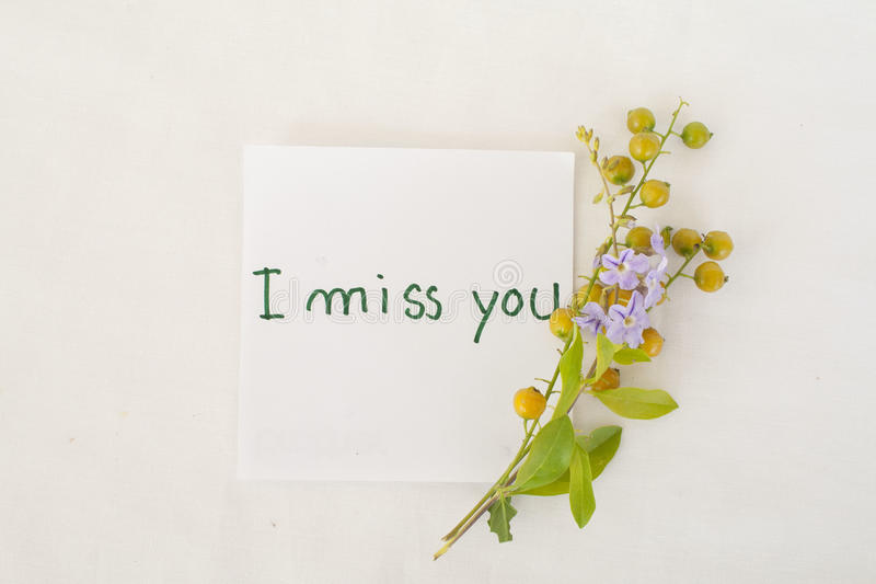 Eu falto-o flores do cartão e da grão da mensagem imagens de stock