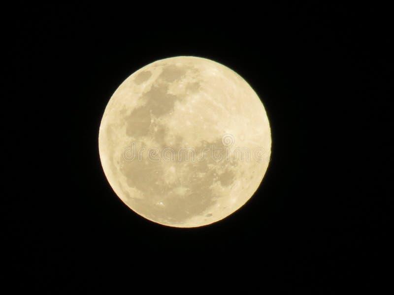 Eu quero roubar a lua fotografia de stock