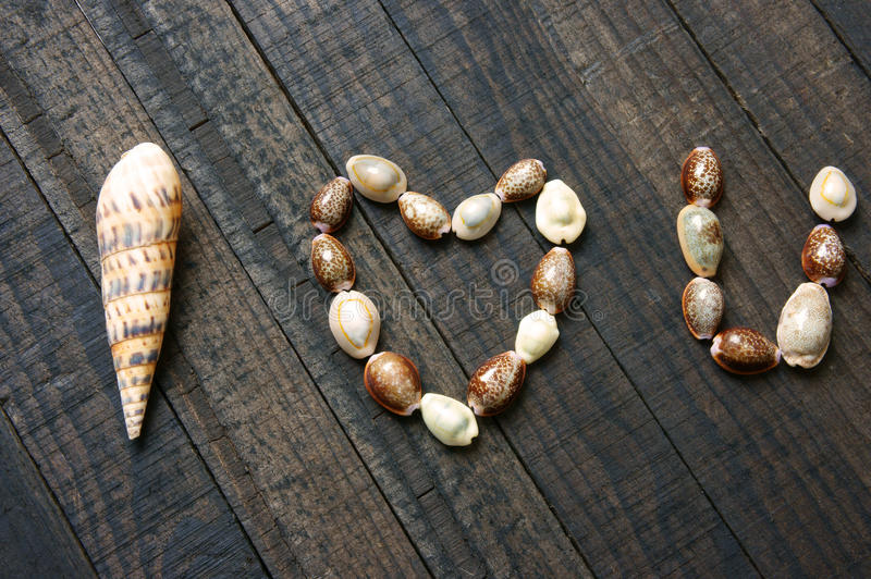 Eu te amo, shell, forma do coração, dia de são valentim foto de stock royalty free