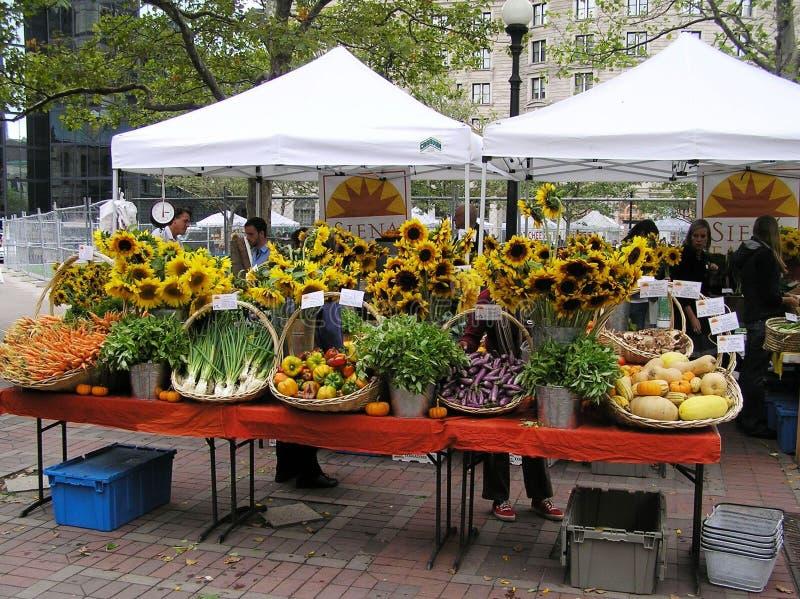 EUA, Boston, Massachusetts Mercado dos fazendeiros em Copley Square foto de stock royalty free