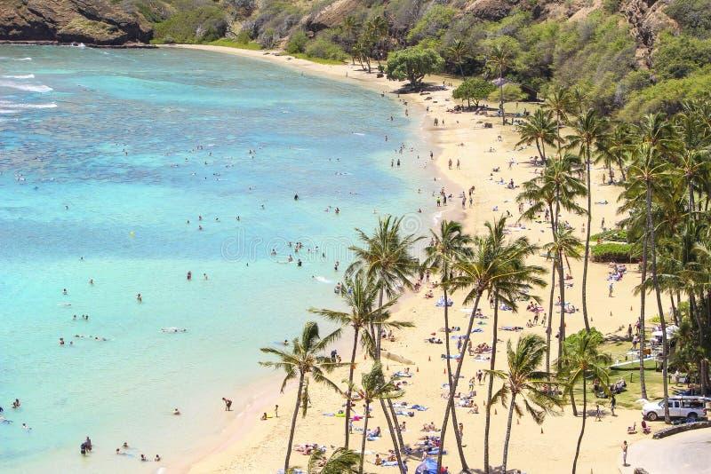 EUA, Havaí, Honululu junho de 2014, praia em um dia ensolarado fotos de stock royalty free